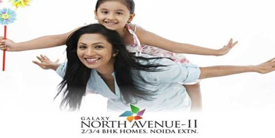 2 BHK Ready to Move in Noida Extension